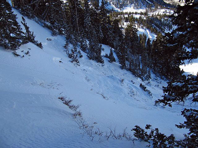 Looking down into the South Chutes zone at Snowbird, and crown of the fatal slide that carried Jamie Pierre. Photo: Utah Avalanche Center