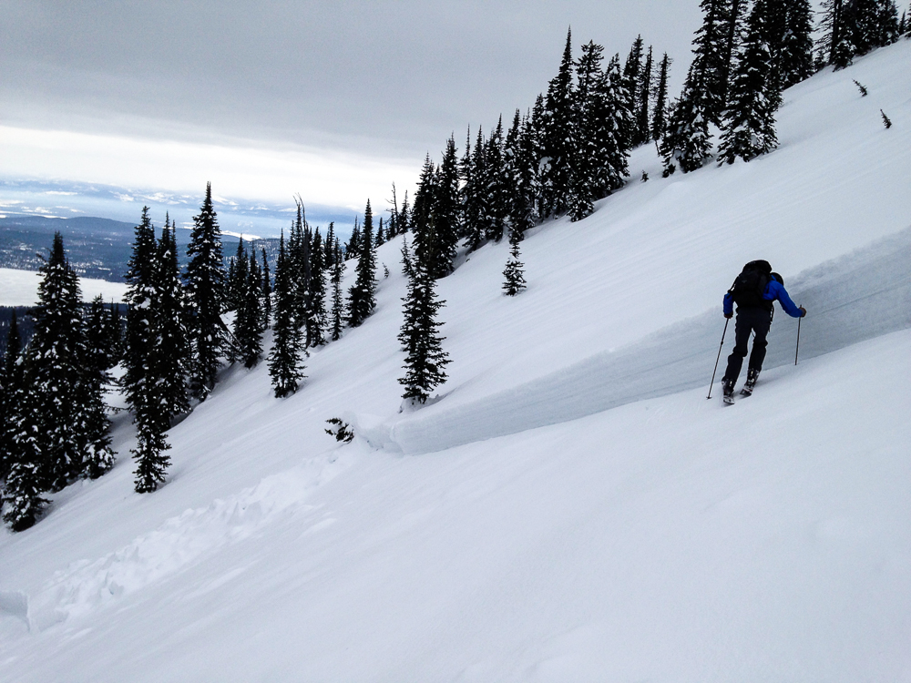 Investigating a slab avalanche crown in the southern Whitefish Range, March 2014.