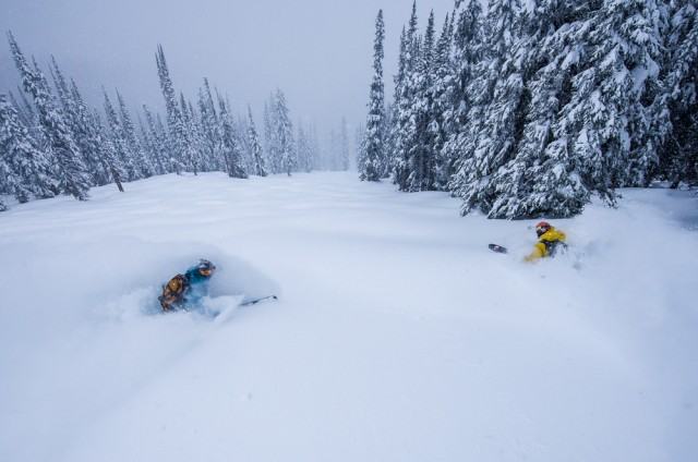 Revelstoke Mountain Resort has the most vertical in North America at 5,620 feet and spans over 3,121 acres of inbound terrain. No wonder it's a hot item. PHOTO: Bruno Long