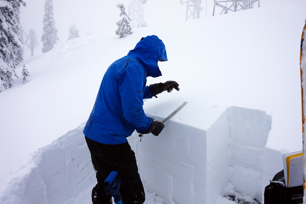 Mark Dundas, one of two new avalanche forecasters at the Flathead Avalanche Center, performs a stabilty test in the southern Whitefish Range of Montana. PHOTO: Courtesy of FAC