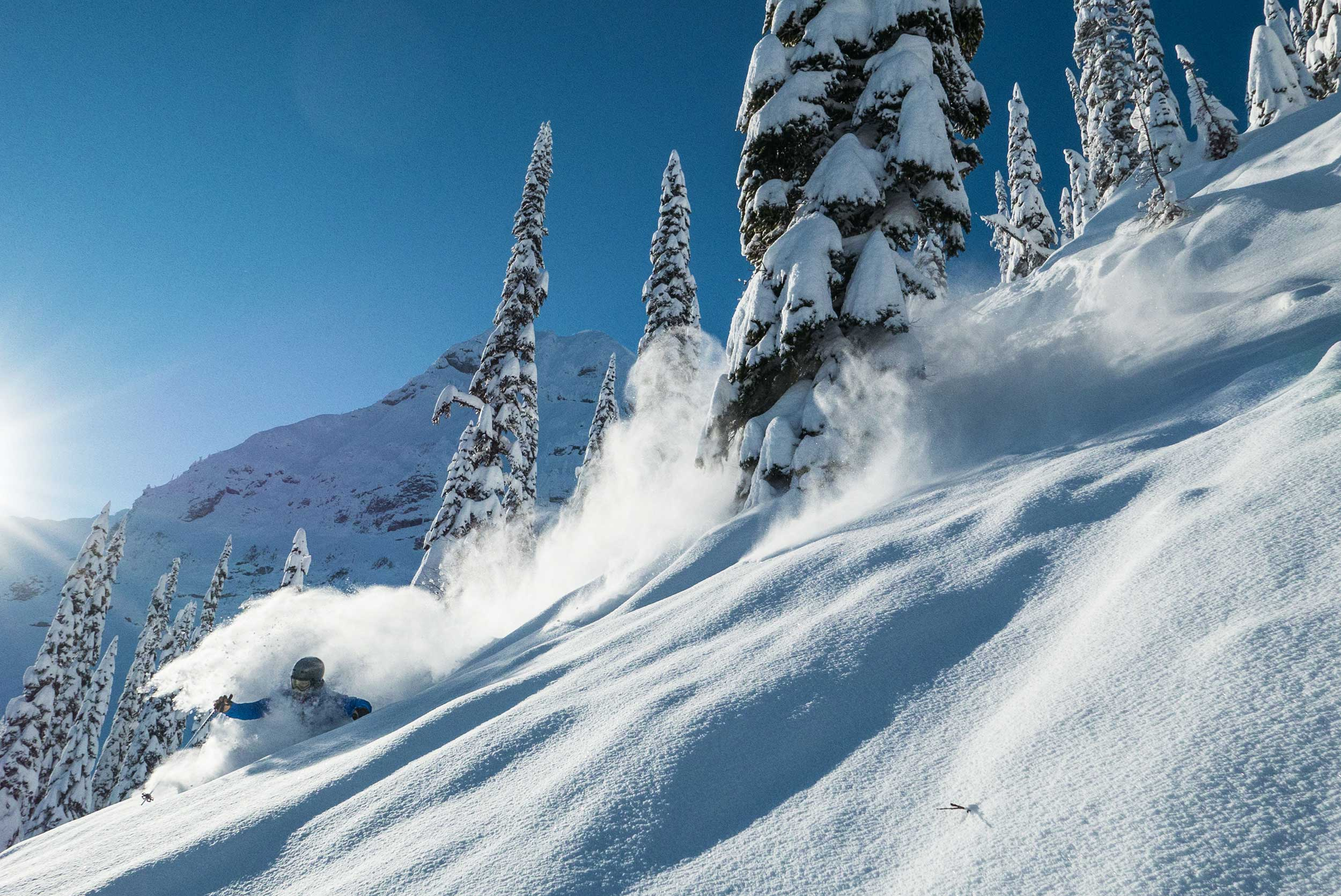 Rob Heule has road tripped all over Canada. But home is the steep, deep trees of British Columbia at Fernie. PHOTO: Jay Heule