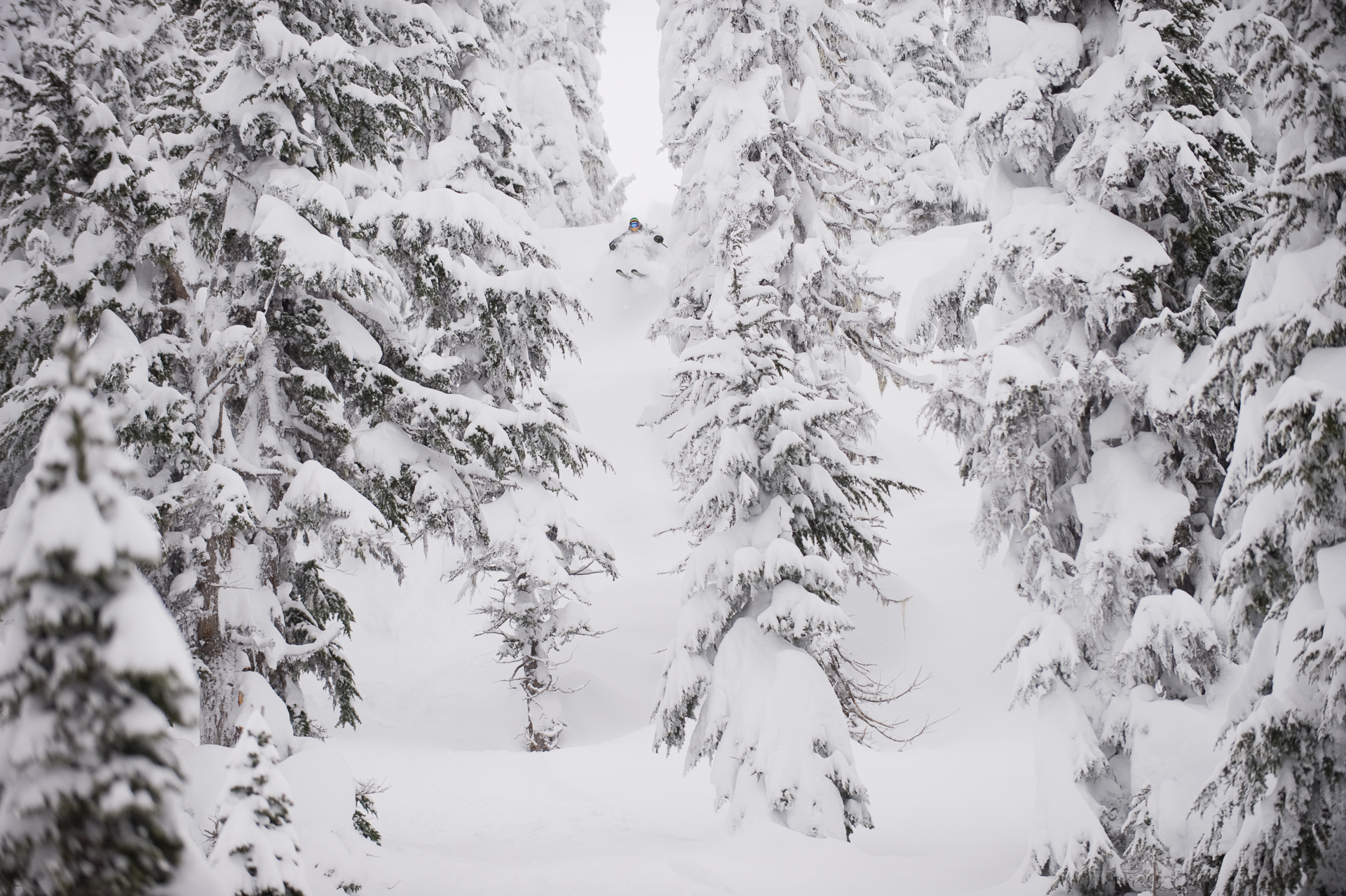 PHOTO: Mark Abma at Mustang Powder Cats, BC, by Scott Markewitz