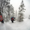 March 1 - Ski cutting with Patrol -Gold Hill trees